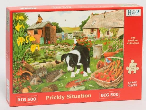 Big 500 Torridon Collection Prickly Situation Launches 14th July 2019.jpg