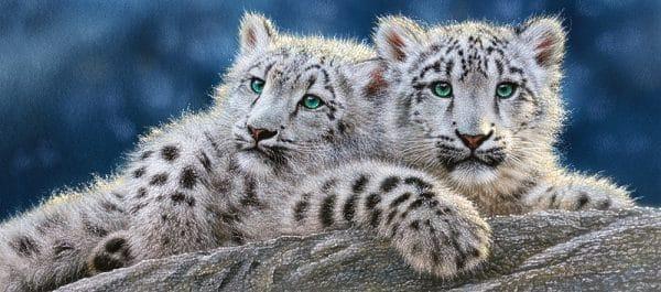 Castorland Snow Leopard Cubs Legpuzzels