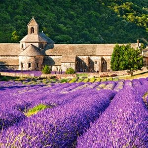 Castorland060313 Notre Dame De Sènanque France 01 Legpuzzels