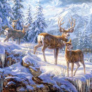Castorland102501 2 Winter Mountain 01 Legpuzzels