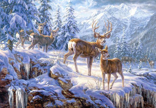 Castorland Winter Mountain Legpuzzels