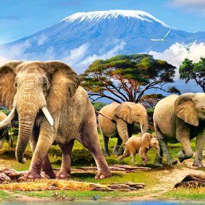 Castorland Kilimanjaro Morning Legpuzzels