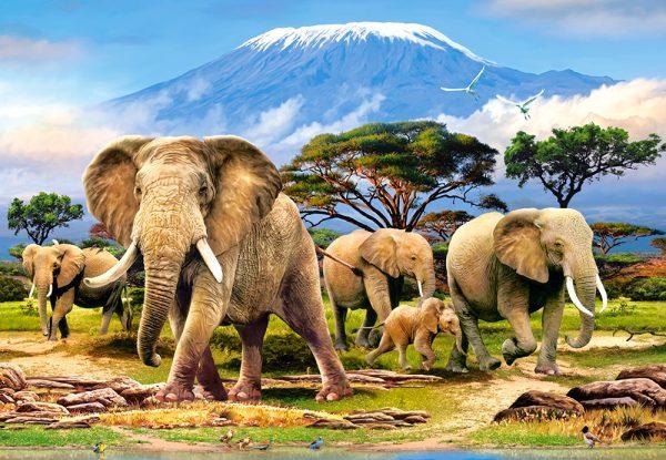 Castorland103188 2 Kilimanjaro Morning 01 Legpuzzels