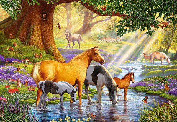 Castorland Horses Stream Legpuzzels