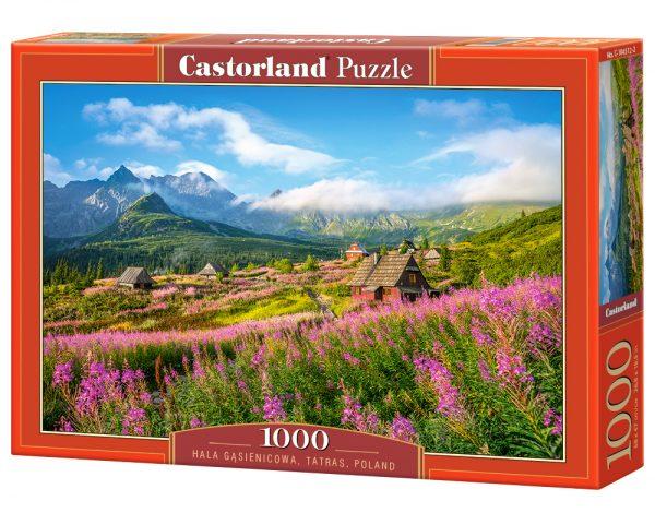 Castorland104512 2 Hala Gąsienicowa Tatras Poland 02 Legpuzzels