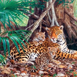 Castorland300280 2 Jaguars In The Jungle (limited Distribution!) 01 Legpuzzels