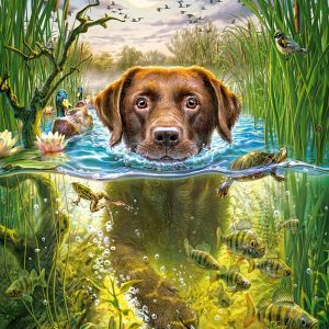 Castorland52882 Swimming Dog 01 Legpuzzels