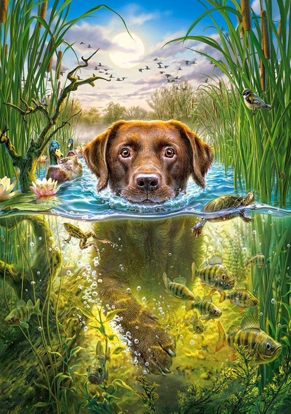 Castorland52882 Swimming Dog 01 Legpuzzels