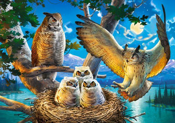 Castorland53322 Owl Family 01 Legpuzzels