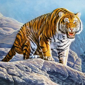 Castorland53346 Tiger On The Rocks 01 Legpuzzels