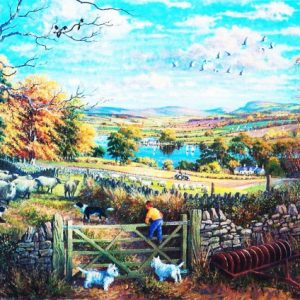 Counting Sheep The House Of Puzzles Legpuzzel 5060002002520 1.jpg