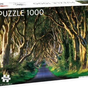 dark hedges in northern ireland 58246 2 tactic