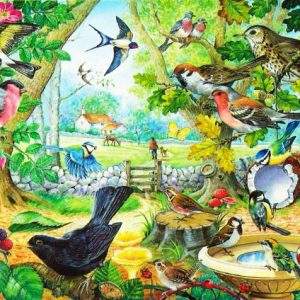 Dawn Chorus The House Of Puzzles Legpuzzel 5060002002063 1.jpg