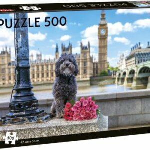 Dog In London