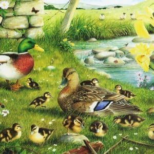 Ducks To Water The House Of Puzzles Legpuzzel 5060002001608 1.jpg