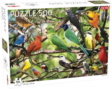 Exotic Birds Tactic