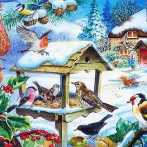 Feed The Birds The House Of Puzzles Legpuzzel 5060002001400 1.jpg