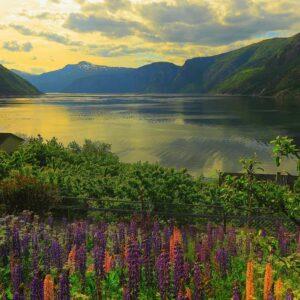 Fjord Noorwegen Legpuzzels