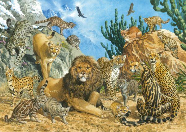 Grote Katten Schmidt Leeuw