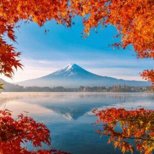 Herfst Bij Mount Fuji Schmidt
