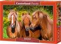 Horse Friends Castorland