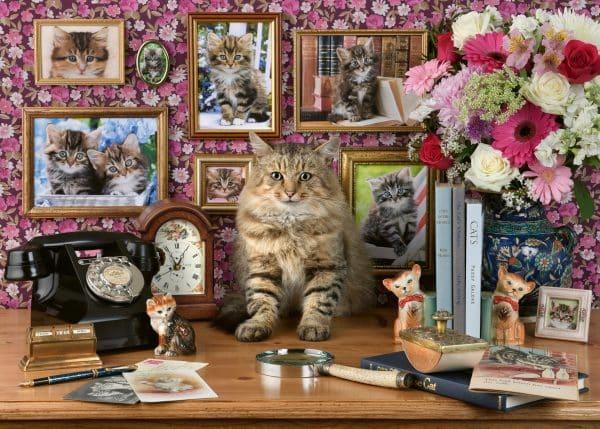 Mijn Katjes Ravensburger159949 01 Legpuzzels.nl