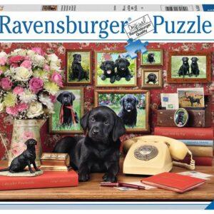 Mijn Trouwe Vrienden Honden Legpuzzels