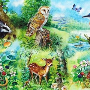 Nature Study The House Of Puzzles Legpuzzel 5060002001424 1.jpg