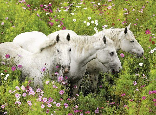 Paarden Tussen De Bloemen Ravensburger132188 01 Kinderpuzzels.nl .jpg