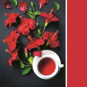Pantone Collectie Goji Berry Clementoni