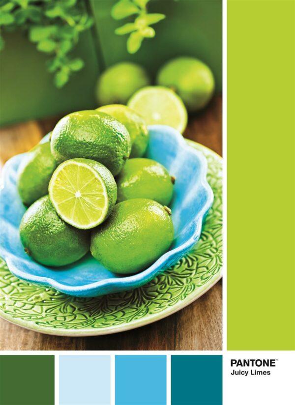 Pantone Collectie Limoen Punch Clementoni