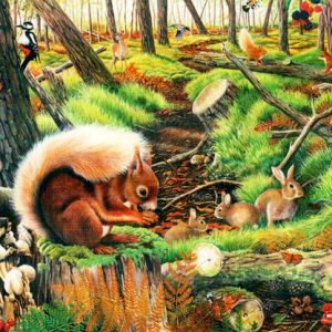 Save Our Squirrels The House Of Puzzles Legpuzzel 5060002003688 1.jpg
