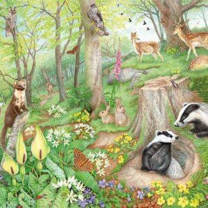 woodland wildlife 11322 1 jumbo