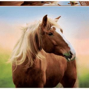 educa paard bij zonsopgang legpuzzel van 500 stukjes