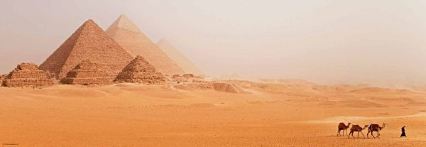 woestijn piramide kameel