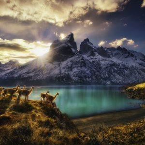 landschap bergen water dieren zon