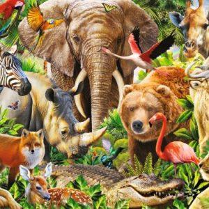 safari olifant leeuw beer panda zebra tijger krokodil aap giraffe